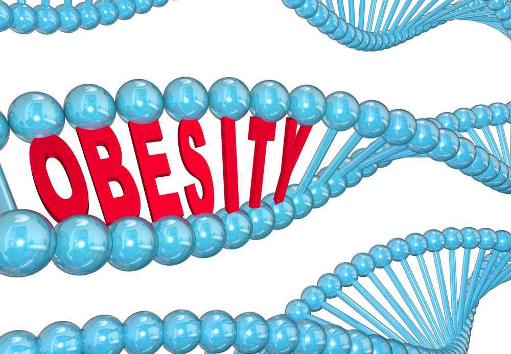 genetic-obesity.jpg